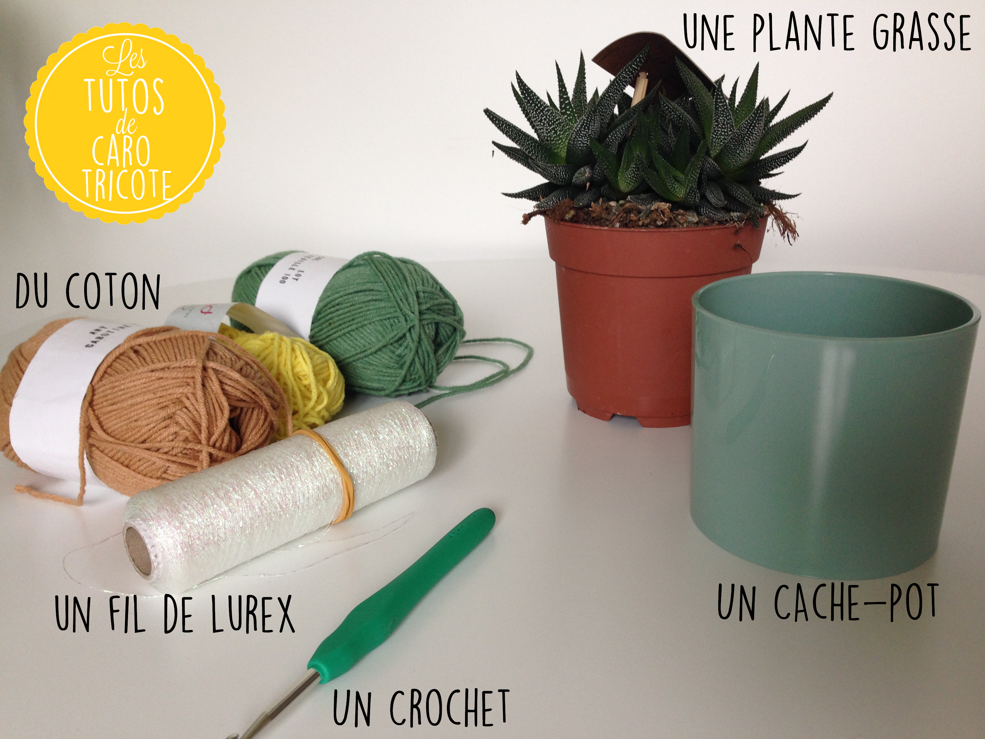 tuto un cache pot au crochet en forme d ananas pour plante grasse le blog de caro tricote. Black Bedroom Furniture Sets. Home Design Ideas